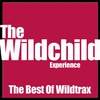 Couverture de l'album Best of Wildtrax