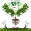 Couverture de l'album Organic Beats Vol. 3