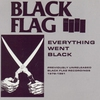 Cover of the album Everything Went Black