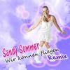 Couverture de l'album Wir können fliegen Rmx (Remix) - Single