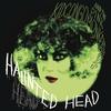 Couverture de l'album Haunted Head