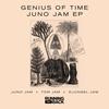 Couverture de l'album Juno Jam - Single