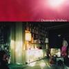 Couverture de l'album Destroyer's Rubies