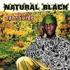 Couverture de l'album Jah Guide