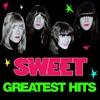 Couverture de l'album Greatest Hits (Rare Studio Versions)