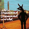 Couverture de l'album It's A Crammed Crammed World