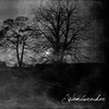 Cover of the album Wombwrecker