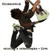 Couverture de l'album Causing a Catastrophe - Live
