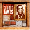 Couverture de l'album The Best of Elmore James