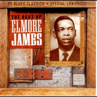 Couverture du titre The Best of Elmore James