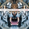 Couverture de l'album This Is War