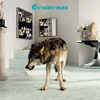 Couverture de l'album Grinderman 2 (Deluxe Version)