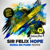 Cover of the track Hope (Nora en Pure Remix)