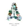 Couverture de l'album Small Hours - Single