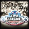 Couverture de l'album Viva Tejano (30 Years of Tejano Hits)