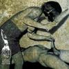 Couverture de l'album Collected Atrocities 2005–2008