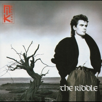 Cover of the track The Riddle