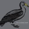 Couverture de l'album Albatross - EP