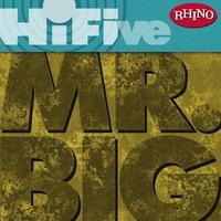 Cover of the track Rhino Hi-Five: Mr. Big - EP