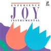 Cover of the album Joy: Instrumental by Interludes