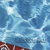 Couverture de l'album Halcyon Daze