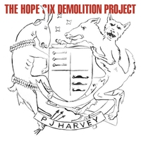 Cover of the track The Hope Six Demolition Project