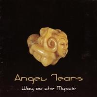 Couverture du titre Way of the Mystic, Vol. 1