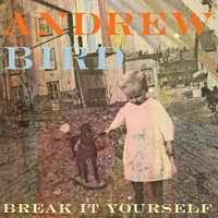 Cover of the track Break It Yourself