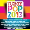 Couverture de l'album Türkçe Pop 2013
