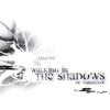 Couverture de l'album Walking In the Shadows of Tomorrow