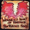 Couverture de l'album Wounded Heart of America