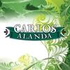 Couverture de l'album Alanda - Single