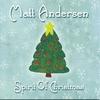 Couverture de l'album Spirit of Christmas