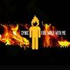 Couverture de l'album Fire Walk With Me