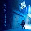Couverture de l'album Nightbird (Live)