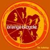 Couverture de l'album The Orange Bicycle - Anthology