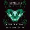 Cover of the album Intimland, Part 3: Penetration