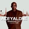 Cover of the album Magnificent City