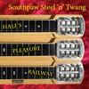 Couverture de l'album Hale's Pleasure Railway