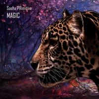 Couverture du titre Magic - EP