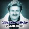 Cover of the album Olacak Şeymi