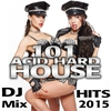 Cover of the album 101 Acid Hard House DJ Mix Hits 2015