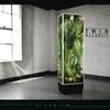 Couverture de l'album Vivarium