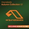 Cover of the album Anjunabeats Autumn Collection 02