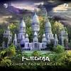 Couverture de l'album Echoes from Jangala