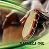 Cover of the album Darbuka Mix