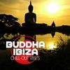 Couverture de l'album Buddha Ibiza Chill Out Vibes