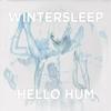 Couverture de l'album Hello Hum (Deluxe Version)