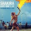 Couverture du titre Hips Dont Lie Feat. Wyclef Jea
