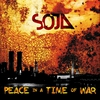 Couverture de l'album Peace in a Time of War